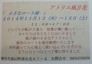 IMG_20141106_163700.jpg